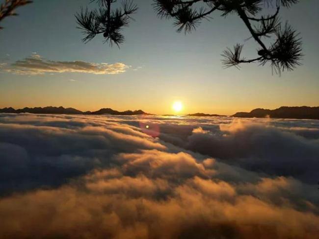 美!梅花山的云海